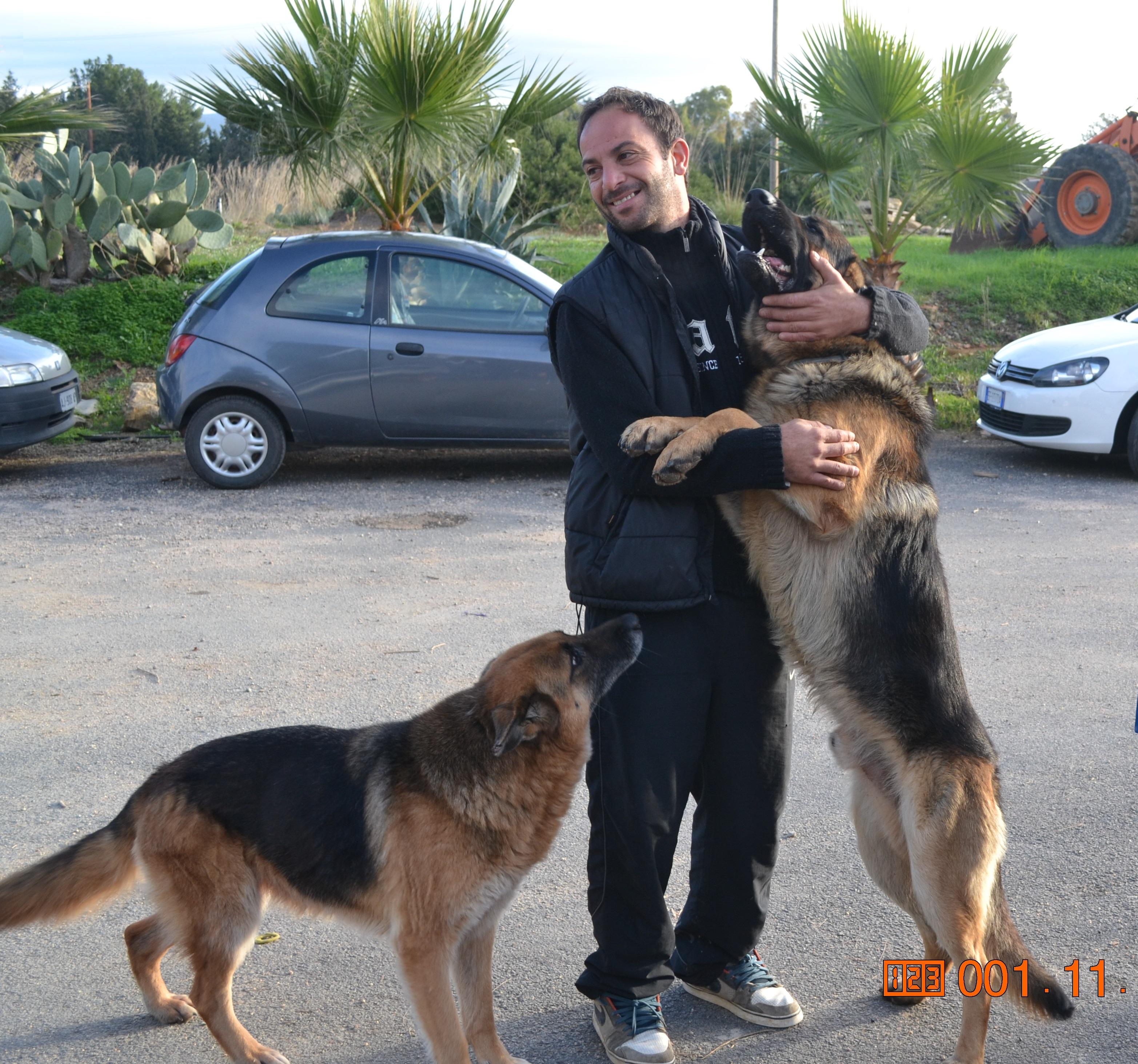 Sem e Laica Chi non ha mai posseduto un cane,non può sapere cosa significhi essere amato.... Shopenhauer