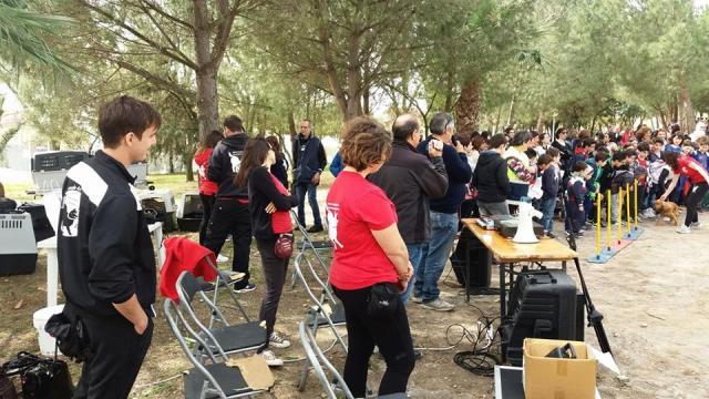 FESTA DEGLI ALBERI MANIFESTAZIONE SERRENTI