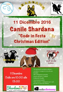 Code in festa Christmas edition